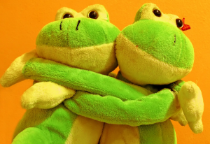Photograph of two soft toys in embrace, frogs hugging