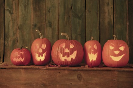 5 carved pumpkins on a wooden shelf