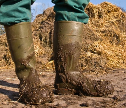 Green wellies covered in mud in front of a hay bale