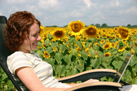 Woman using a laptop in a field of sunflowers