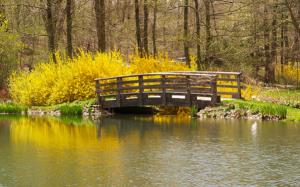 Wooden bridge in rural location