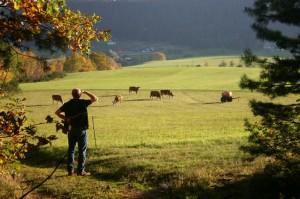 Farmer looking out across a field