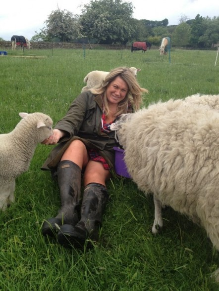 Joanna is pinned down by two sheep, while one sheep eats the food in the bucket.