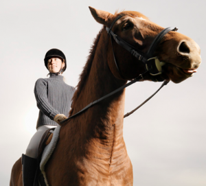 What is EquestrianSingles